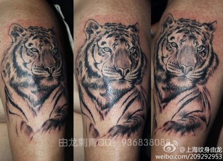 男生手臂老虎纹身