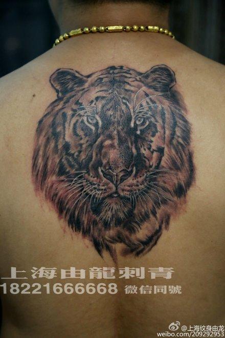 老虎头纹身矢量图图片