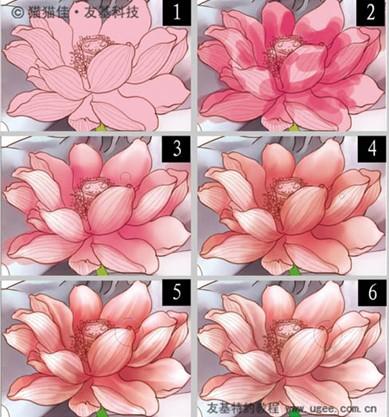 关于莲花纹身寓意和图案