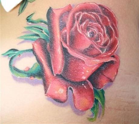 ——素材,欣赏; |浦东纹身|玫瑰花纹身|玫瑰花纹身图案_上海由龙刺青