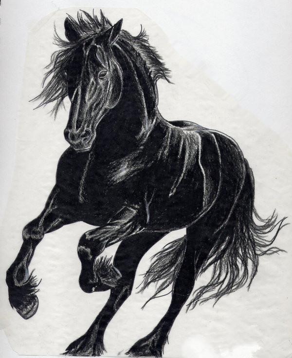 上海纹身由龙刺青解答马纹身有什么寓意?图片