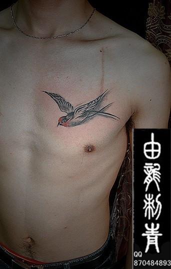 关于鸟纹身寓意及图案欣赏