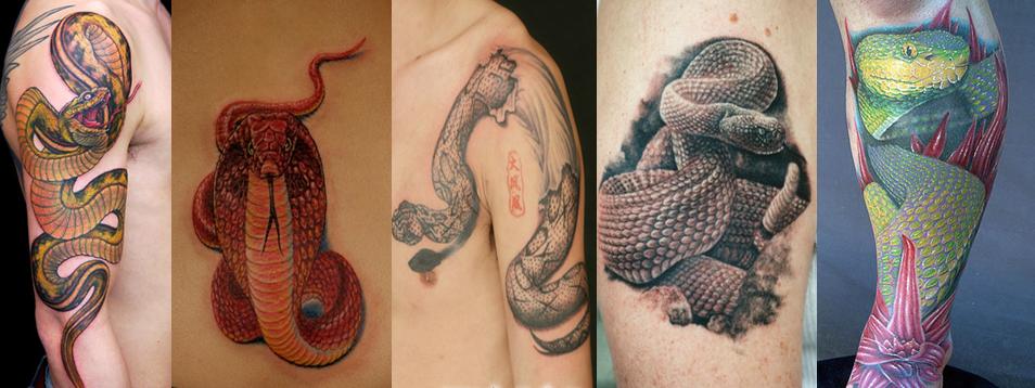 """所称:越人""""劗发纹身,灿烂成章,以象龙子者,将避水神."""